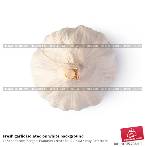 Fresh garlic isolated on white background. Стоковое фото, фотограф Zoonar.com/Serghei Platonov / easy Fotostock / Фотобанк Лори