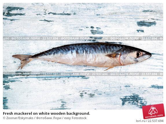 Купить «Fresh mackerel on white wooden background.», фото № 22537694, снято 22 апреля 2019 г. (c) easy Fotostock / Фотобанк Лори