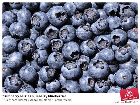 fruit berry berries blueberry blueberries. Стоковое фото, фотограф Bernhard Richter / PantherMedia / Фотобанк Лори