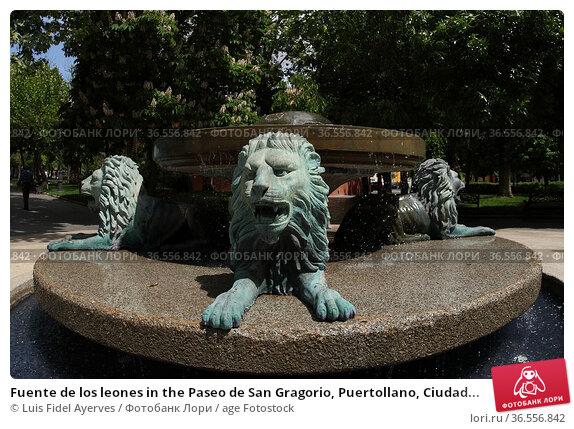 Fuente de los leones in the Paseo de San Gragorio, Puertollano, Ciudad... Стоковое фото, фотограф Luis Fidel Ayerves / age Fotostock / Фотобанк Лори