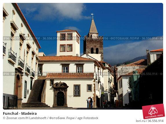 Funchal - Madeira. Стоковое фото, фотограф Zoonar.com/H Landshoeft / age Fotostock / Фотобанк Лори