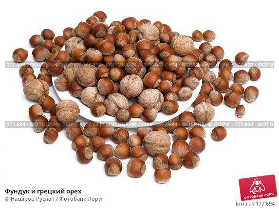 Купить «Фундук и грецкий орех», фото № 177694, снято 16 января 2008 г. (c) Насыров Руслан / Фотобанк Лори