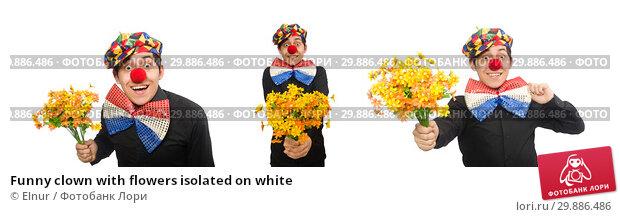 Купить «Funny clown with flowers isolated on white», фото № 29886486, снято 22 января 2015 г. (c) Elnur / Фотобанк Лори