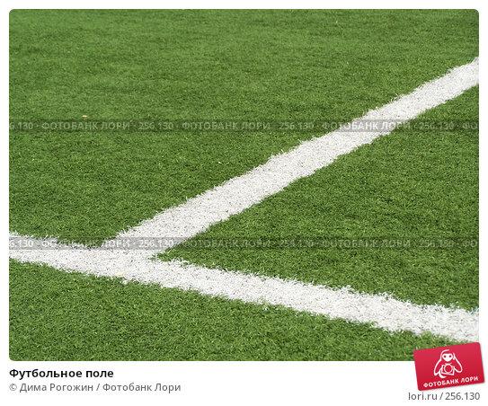 Купить «Футбольное поле», фото № 256130, снято 9 апреля 2008 г. (c) Дима Рогожин / Фотобанк Лори