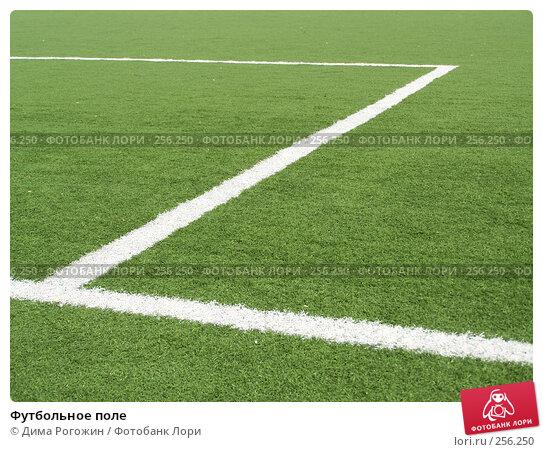 Футбольное поле, фото № 256250, снято 9 апреля 2008 г. (c) Дима Рогожин / Фотобанк Лори