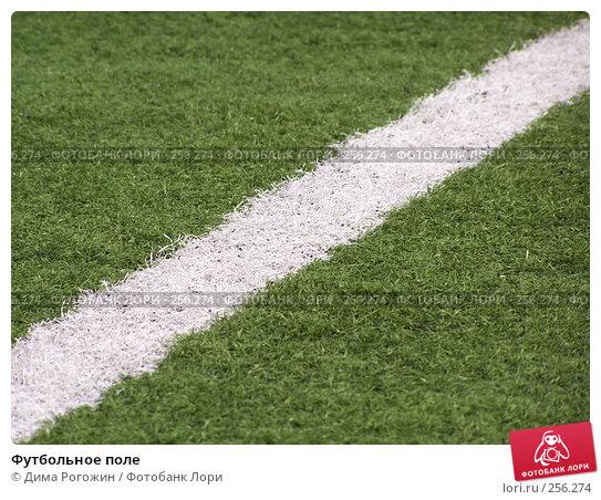 Футбольное поле, фото № 256274, снято 9 апреля 2008 г. (c) Дима Рогожин / Фотобанк Лори