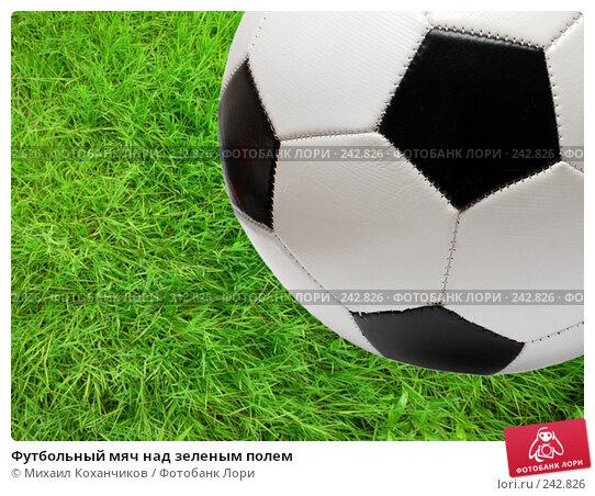 Футбольный мяч над зеленым полем, фото № 242826, снято 21 июля 2007 г. (c) Михаил Коханчиков / Фотобанк Лори