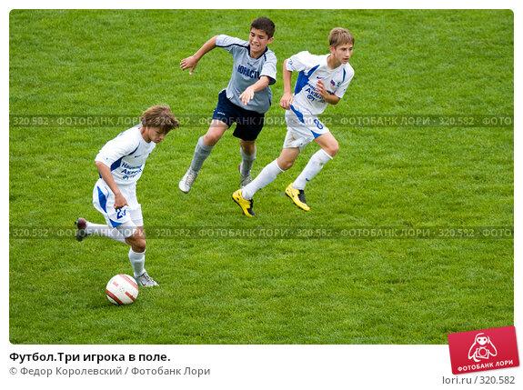 Футбол.Три игрока в поле., фото № 320582, снято 12 июня 2008 г. (c) Федор Королевский / Фотобанк Лори