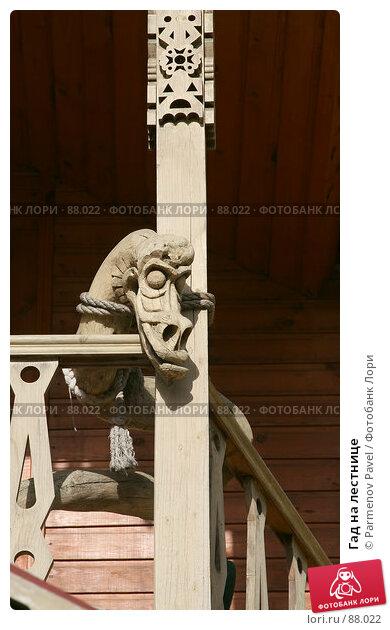 Гад на лестнице, фото № 88022, снято 16 сентября 2007 г. (c) Parmenov Pavel / Фотобанк Лори