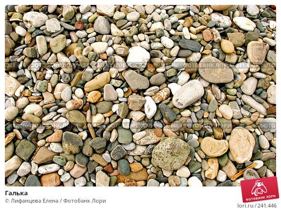 Галька, фото № 241446, снято 24 марта 2008 г. (c) Лифанцева Елена / Фотобанк Лори