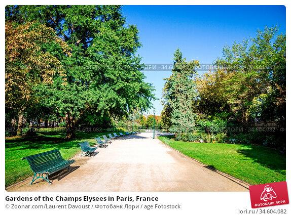 Gardens of the Champs Elysees in Paris, France. Стоковое фото, фотограф Zoonar.com/Laurent Davoust / age Fotostock / Фотобанк Лори