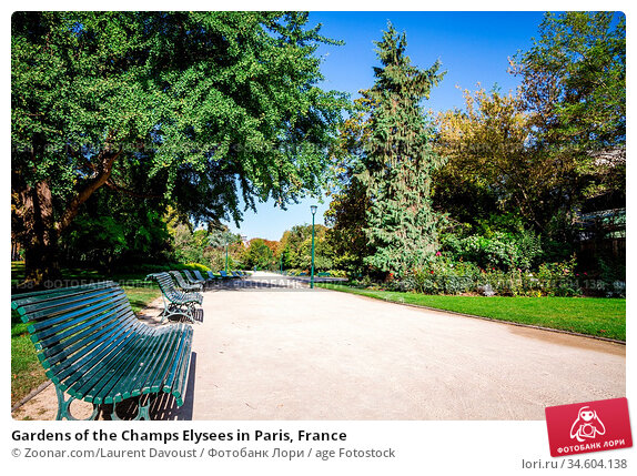 Gardens of the Champs Elysees in Paris, France. Стоковое фото, фотограф Zoonar.com/Laurent Davoust / age Fotostock / Фотобанк Лори