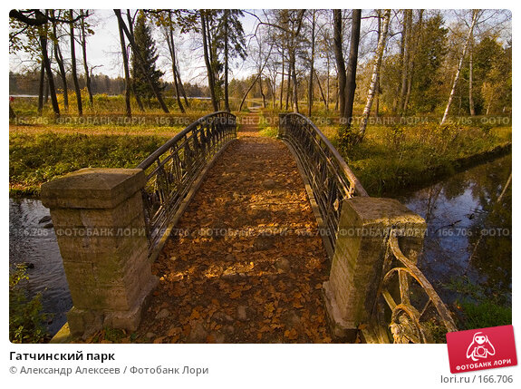 Купить «Гатчинский парк», эксклюзивное фото № 166706, снято 6 октября 2007 г. (c) Александр Алексеев / Фотобанк Лори