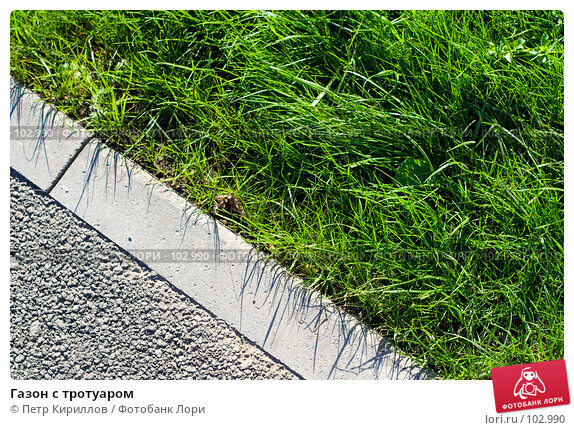 Газон с тротуаром, фото № 102990, снято 18 января 2017 г. (c) Петр Кириллов / Фотобанк Лори