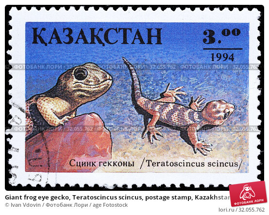 Giant frog eye gecko, Teratoscincus scincus, postage stamp, Kazakhstan, 1994. (2015 год). Редакционное фото, фотограф Ivan Vdovin / age Fotostock / Фотобанк Лори