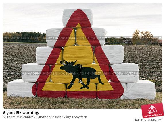 Gigant Elk warning. Стоковое фото, фотограф Andre Maslennikov / age Fotostock / Фотобанк Лори