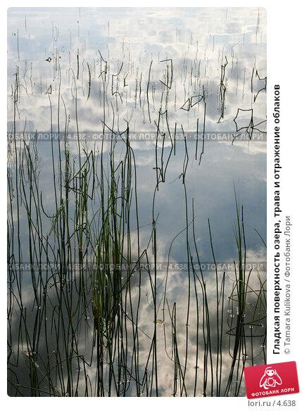Купить «Гладкая поверхность озера, трава и отражение облаков», фото № 4638, снято 20 августа 2005 г. (c) Tamara Kulikova / Фотобанк Лори