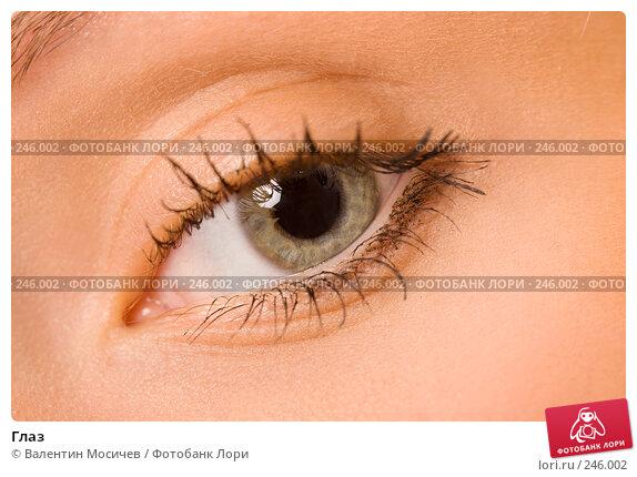 Глаз, фото № 246002, снято 6 апреля 2008 г. (c) Валентин Мосичев / Фотобанк Лори
