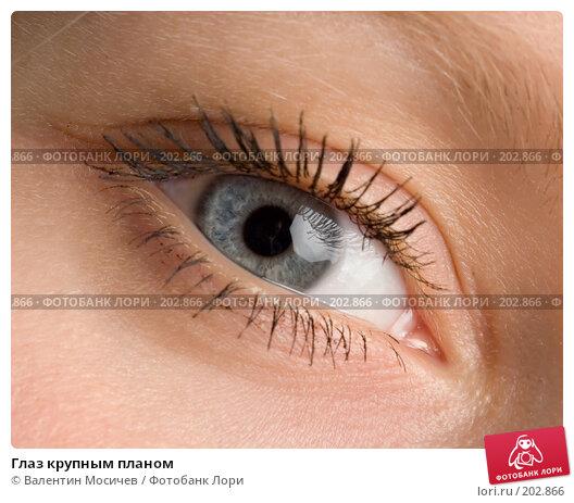 Глаз крупным планом, фото № 202866, снято 28 июня 2007 г. (c) Валентин Мосичев / Фотобанк Лори