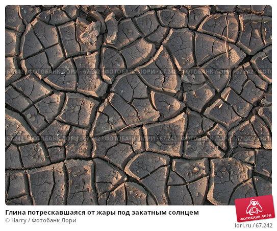 Глина потрескавшаяся от жары под закатным солнцем, фото № 67242, снято 26 августа 2004 г. (c) Harry / Фотобанк Лори