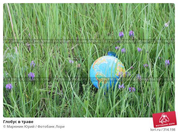 Глобус в траве, фото № 314198, снято 28 мая 2008 г. (c) Марюнин Юрий / Фотобанк Лори