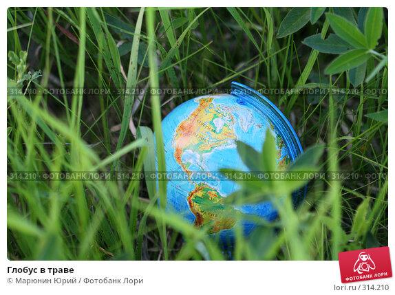 Глобус в траве, фото № 314210, снято 28 мая 2008 г. (c) Марюнин Юрий / Фотобанк Лори