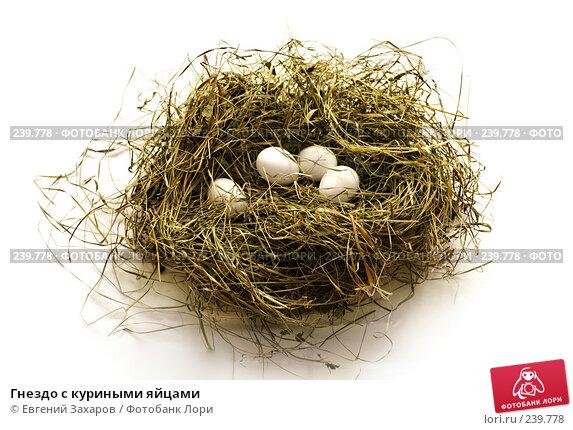 Гнездо с куриными яйцами, фото № 239778, снято 25 марта 2008 г. (c) Евгений Захаров / Фотобанк Лори