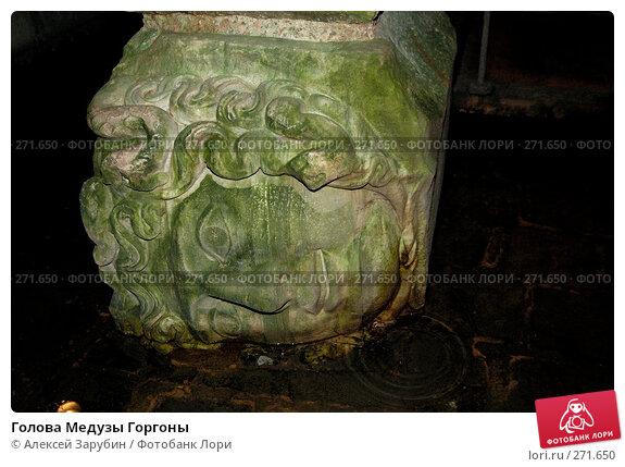 Купить «Голова Медузы Горгоны», фото № 271650, снято 4 ноября 2007 г. (c) Алексей Зарубин / Фотобанк Лори