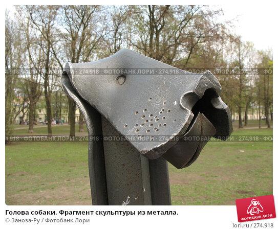 Голова собаки. Фрагмент скульптуры из металла., фото № 274918, снято 1 мая 2008 г. (c) Заноза-Ру / Фотобанк Лори