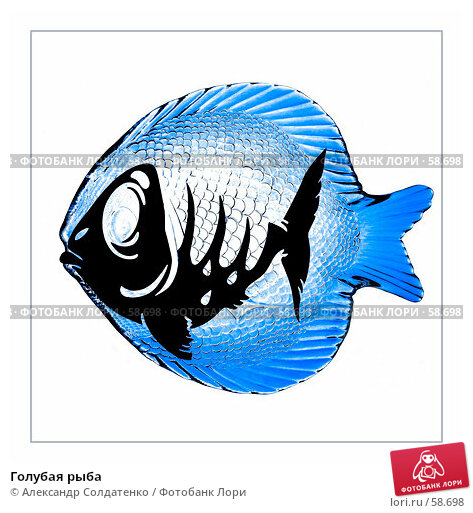 Купить «Голубая рыба», фото № 58698, снято 24 марта 2018 г. (c) Александр Солдатенко / Фотобанк Лори