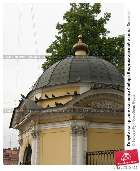 Голуби на крыше часовни Собора Владимирской иконы Божией Матери. Санкт-Петербург, фото № 310422, снято 1 июня 2008 г. (c) Заноза-Ру / Фотобанк Лори