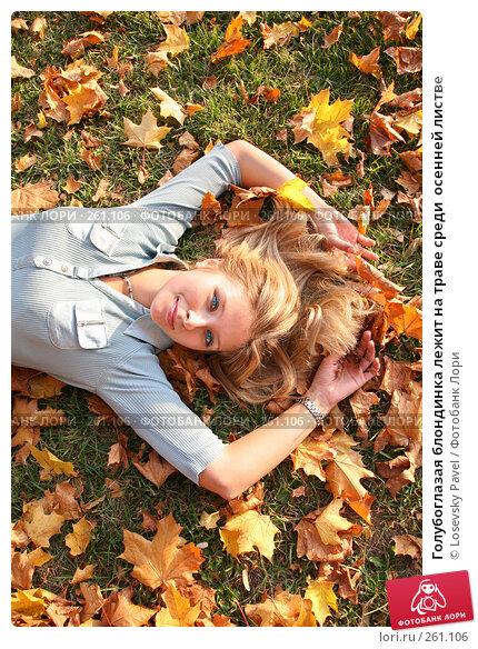 Купить «Голубоглазая блондинка лежит на траве среди  осенней листве», фото № 261106, снято 24 ноября 2017 г. (c) Losevsky Pavel / Фотобанк Лори