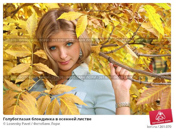 Голубоглазая блондинка в осенней листве, фото № 261070, снято 23 марта 2017 г. (c) Losevsky Pavel / Фотобанк Лори