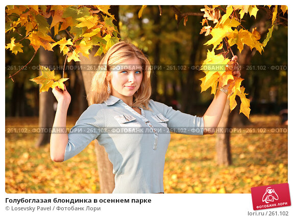 Купить «Голубоглазая блондинка в осеннем парке», фото № 261102, снято 20 марта 2018 г. (c) Losevsky Pavel / Фотобанк Лори