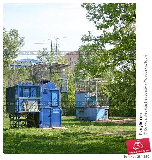 Голубятня, фото № 281650, снято 12 мая 2008 г. (c) Коннов Леонид Петрович / Фотобанк Лори