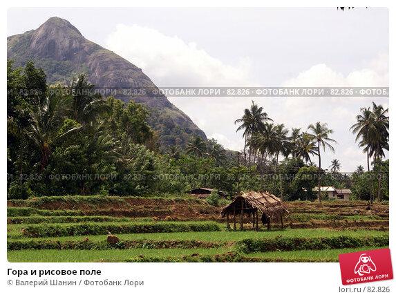 Купить «Гора и рисовое поле», фото № 82826, снято 13 июня 2007 г. (c) Валерий Шанин / Фотобанк Лори