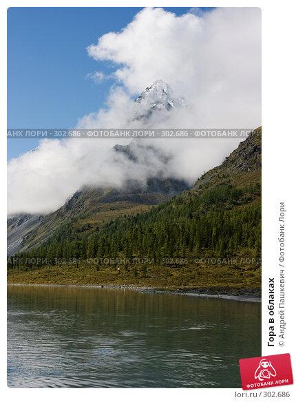 Гора в облаках, фото № 302686, снято 21 июля 2017 г. (c) Андрей Пашкевич / Фотобанк Лори
