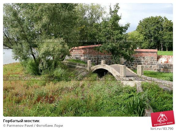 Горбатый мостик, фото № 83790, снято 4 сентября 2007 г. (c) Parmenov Pavel / Фотобанк Лори