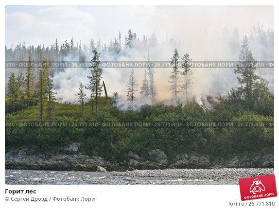 Горит лес, фото № 26771810, снято 2 августа 2017 г. (c) Сергей Дрозд / Фотобанк Лори