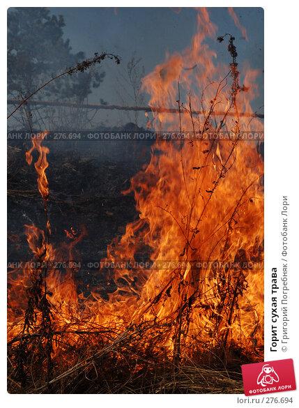 Горит сухая трава, фото № 276694, снято 7 мая 2008 г. (c) Григорий Погребняк / Фотобанк Лори