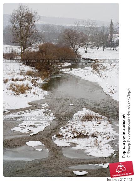 Горная речка зимой, фото № 217442, снято 18 февраля 2008 г. (c) Федор Королевский / Фотобанк Лори