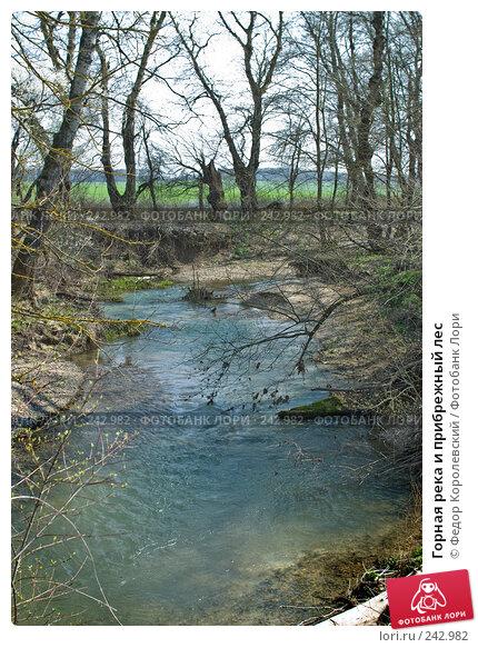 Горная река и прибрежный лес, фото № 242982, снято 4 апреля 2008 г. (c) Федор Королевский / Фотобанк Лори