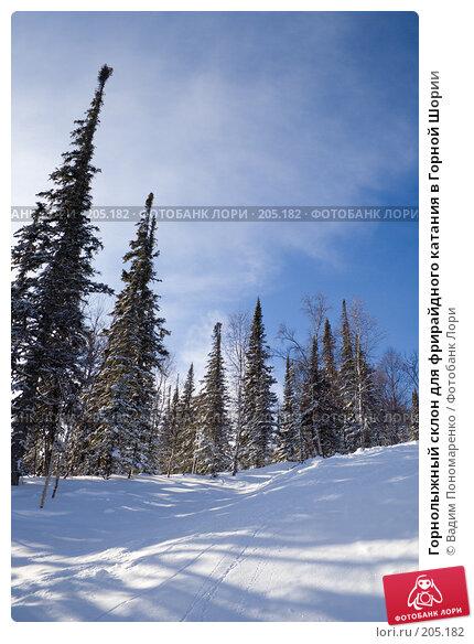 Горнолыжный склон для фрирайдного катания в Горной Шории, фото № 205182, снято 17 февраля 2008 г. (c) Вадим Пономаренко / Фотобанк Лори