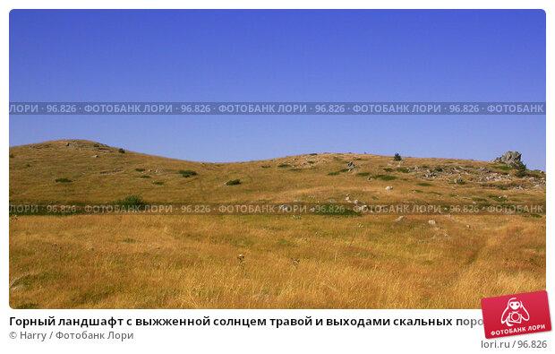 Горный ландшафт с выжженной солнцем травой и выходами скальных пород, фото № 96826, снято 24 августа 2007 г. (c) Harry / Фотобанк Лори