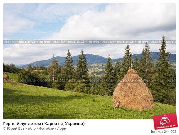 Горный луг летом ( Карпаты, Украина), фото № 244002, снято 2 сентября 2007 г. (c) Юрий Брыкайло / Фотобанк Лори