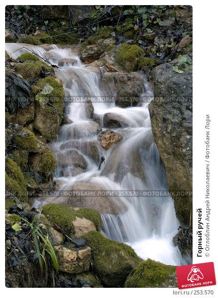 Купить «Горный ручей», фото № 253570, снято 30 ноября 2003 г. (c) Оглоблин Андрей Николаевич / Фотобанк Лори