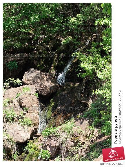 Горный ручей, фото № 276662, снято 2 мая 2008 г. (c) Игорь Дашко / Фотобанк Лори