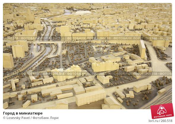 Город в миниатюре, фото № 260518, снято 17 января 2017 г. (c) Losevsky Pavel / Фотобанк Лори