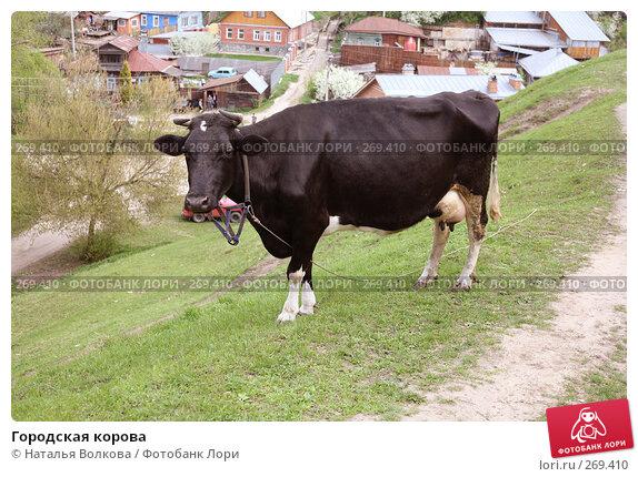 Городская корова, эксклюзивное фото № 269410, снято 1 мая 2008 г. (c) Наталья Волкова / Фотобанк Лори