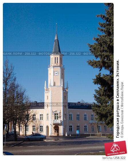 Купить «Городская ратуша в Силламяэ. Эстония.», фото № 258322, снято 19 апреля 2008 г. (c) Игорь Соколов / Фотобанк Лори